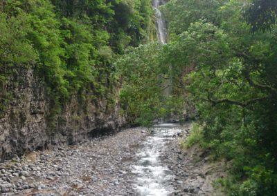 Cascade Dassy (2)