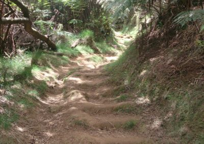 Dimitile Sentier (2)