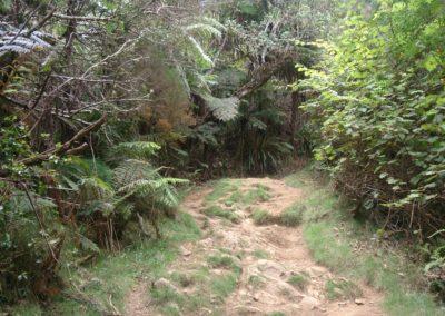 Dimitile Sentier