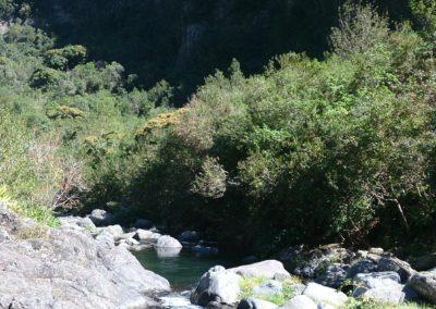 Grand Bassin (3)