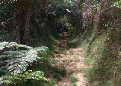 Sentier Dimitile